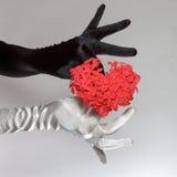 As luvas preto e branco de mulheres elegantes que guardam o coração deram forma a flores no fundo branco Foto de Stock Royalty Free