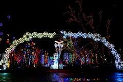 As luzes brilhantes arqueiam na entrada para estacionar o globa da cidade de Dnipro em Ucrânia festões de suspensão e decorações  fotografia de stock