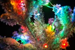 As luzes de brilho de uma árvore de Natal natural cobriram a neve. Macro Imagem de Stock
