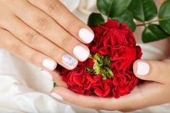 As mãos com os pregos manicured curtos que guardam uma rosa vermelha florescem Imagem de Stock