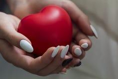 As mãos da menina que guardam o coração vermelho, cuidados médicos, conceito doam e das seguros da família, dia do coração do mun fotografia de stock