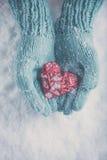 As mãos da mulher cerceta clara em mitenes feitos malha estão guardando o coração vermelho lustroso bonito no fundo da neve Amor, imagens de stock