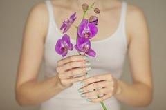 As mãos da mulher com a arte perfeita do prego que guarda a mola cor-de-rosa florescem tulipas Foto de Stock Royalty Free