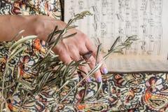 As mãos da mulher guardam notas do piano Foco seletivo imagens de stock royalty free