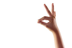 As mãos da mulher mantêm o cartão virtual do sinal isolado no branco Foto de Stock Royalty Free
