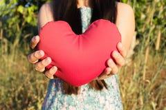 As mãos da senhora delicadamente levantam e guardam o coração vermelho com amor e respeitam-no com fundo da natureza Imagens de Stock Royalty Free