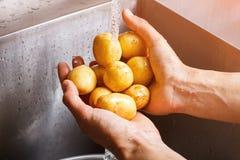 As mãos do homem que lavam batatas Fotos de Stock