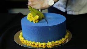 As mãos do pasteleiro reduziram o bolo decorado azul em duas porções filme