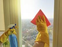 As mãos do ` s das mulheres lavam a janela, prestam serviços de manutenção à limpeza detergente da casa da arruela Imagem de Stock Royalty Free