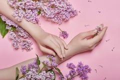 As mãos e as flores da mola estão em um skincare cor-de-rosa da tabela Cosméticos da natureza para cuidados com a pele da mão, me imagem de stock