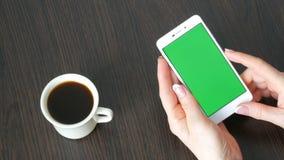 As mãos fêmeas com tratamento de mãos francês bonito tomam um smartphone branco com a tela verde perto da xícara de café branca u video estoque