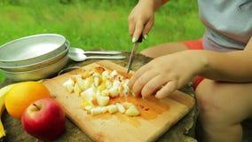 As mãos fêmeas cortaram partes de pêssego em uma placa de madeira para uma salada em um piquenique filme