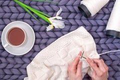 As mãos fêmeas fazem malha uma cobertura com agulhas de confecção de malhas passatempo fotografia de stock royalty free