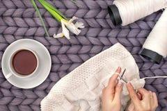 As mãos fêmeas fazem malha uma cobertura com agulhas de confecção de malhas passatempo fotos de stock