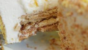 As mãos fêmeas tomam o pedaço de bolo na lâmina Mulher que guarda o pedaço de bolo na lâmina Pedaço de bolo com mel filme