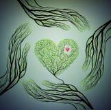 As mãos humanas olham como ramos de árvore e guardam o coração da árvore, amam o conceito da natureza, protegem a ideia da árvore ilustração stock