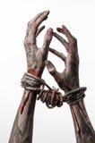 As mãos limitam, as mãos ensanguentados, lama, corda, em um fundo branco, isolado, sequestrando, zombi, demônio Fotografia de Stock