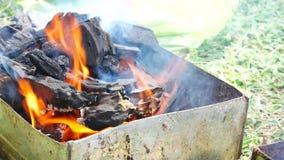 As mãos são grade ou assado grelhado do marisco com carvão vegetal no partido vídeos de arquivo