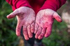 As mãos sujas abrem para a inspeção imagem de stock royalty free