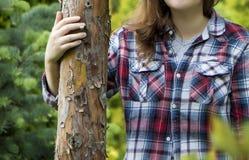 As mãos tocam na árvore Imagem de Stock