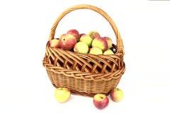 As maçãs Imagem de Stock