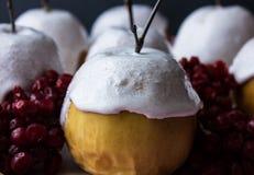 As maçãs cozidas em uma merengue com vidoeiro ramificam em um fundo escuro Imagens de Stock
