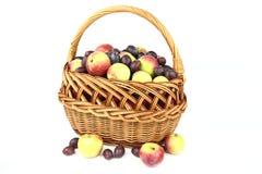 As maçãs e a ameixa Foto de Stock Royalty Free
