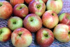 As maçãs maduras vermelhas e verdes lavadas com água deixam cair Imagem de Stock Royalty Free