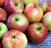 As maçãs maduras vermelhas e verdes lavadas com água deixam cair Foto de Stock Royalty Free