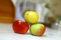As maçãs recentemente lavadas na cozinha isolaram o tiro na luz do dia é imagem de stock royalty free