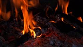 As madeiras de queimadura com fogo e brasas fecham-se acima filme