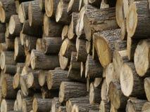 As madeiras empilham empilhado Imagens de Stock Royalty Free
