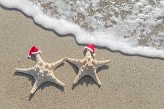 as Mar-estrelas acoplam-se em chapéus de Santa na areia Imagem de Stock Royalty Free