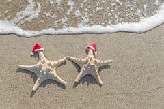 as Mar-estrelas acoplam-se em chapéus de Santa na areia Imagens de Stock Royalty Free