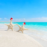 as Mar-estrelas acoplam-se em chapéus de Santa na praia do mar Anos novos ou Cristo Fotos de Stock