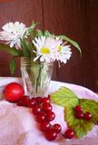 as margaridas Branco-cor-de-rosa em um copo de vidro estão no coto No tabl Foto de Stock Royalty Free