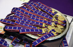 As medalhas de ouro do campeonato do mundo de IIHF Foto de Stock Royalty Free