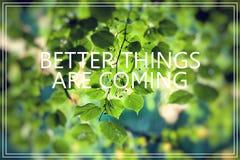 As melhores coisas estão vindo O verde deixa o fundo Imagens de Stock Royalty Free