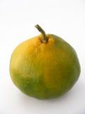 As melhores imagens da tangerina para blocos da embalagem e do suco Imagens de Stock Royalty Free
