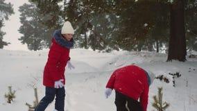 As meninas adolescentes felizes jogam bolas de neve no jogo de crianças da floresta do pinho com neve no parque zimy Feriados do  vídeos de arquivo
