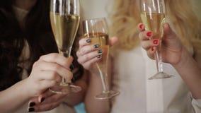 As meninas bonitas novas falam o brinde do aniversário com os vidros do champanhe video estoque
