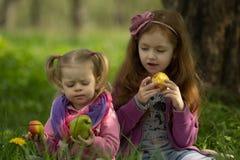 As meninas comem maçãs Foto de Stock