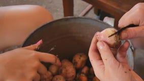 As meninas do tratamento de mãos limpam as batatas novas sobre uma cubeta video estoque
