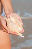 As meninas entregam guardar um shell Foto de Stock