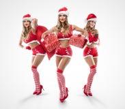 As meninas 'sexy' bonitas com o telefone que veste Papai Noel vestem-se Imagens de Stock
