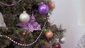 As moças decoram a árvore de Natal vídeos de arquivo