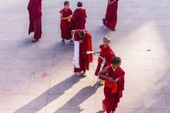 As monges novas tibetanas andam e jogam na frente do monastério de Rumtek após a monge de nível elevado chegaram perto de Gangtok Imagens de Stock