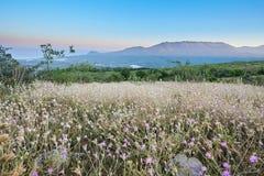 As montanhas azuis em Crimeia Fotografia de Stock Royalty Free
