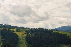 As montanhas Carpathian 37 Imagens de Stock