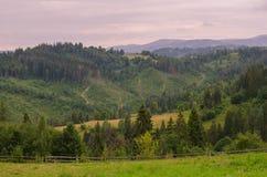 As montanhas Carpathian 32 Imagem de Stock